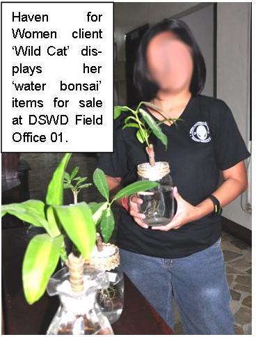 HFW_Wild Cat